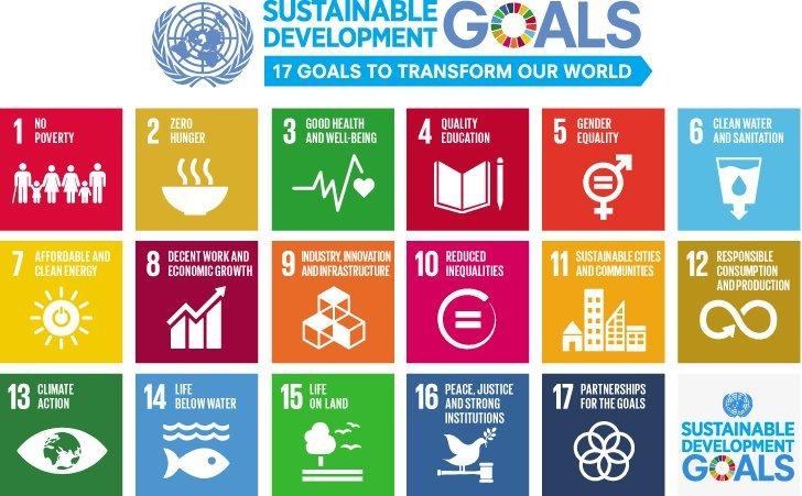 Insegnare la sostenibilità a scuola: 5 idee