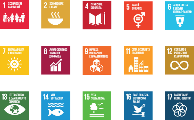 Agenda 2030 StrategieSociali.it